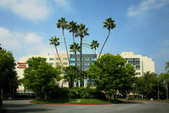 Sheraton Fairplex Hotel & Conference Center - Hotel - 601 West McKinley Avenue, Pomona, CA, 91768, USA