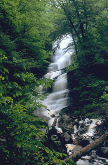 Lye Brook Falls - Parks/Recreation, Attractions/Entertainment - Lye Brook Falls Service Rd, Manchester Center, VT, US