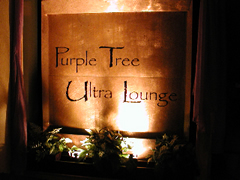 Purple Tree Lounge - Bars/Nightife - 36 N Market St, Charleston, SC, United States