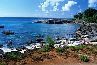Shark's Cove (pupukea Beach Park) - Attractions/Entertainment - 59-712 Kamehameha Hwy, Haleiwa, HI, United States