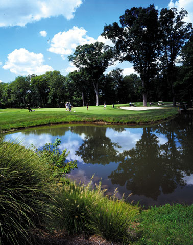 Fiddler's Elbow Cc - Meadow Course - Golf Courses - 811 Rattlesnake Bridge Rd, Bedminster, NJ, United States
