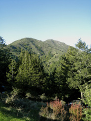 Mount Tamalpais - Attractions/Entertainment - Bolinas Ridge Rd, Mill Valley, CA, US
