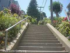 Vulcan Street Steps - Attraction - Levant St & Lower Ter, San Francisco, CA, 94114, US