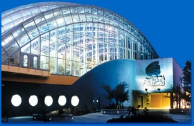 Fl Aquarium - Attractions/Entertainment - 701 Channelside Dr, Tampa, FL, 33602, US