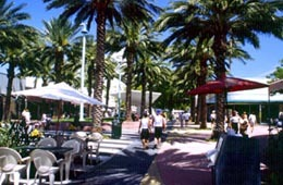 Lincoln Rd. - Shopping, Attractions/Entertainment - Lincoln Rd, Miami Beach, FL, US