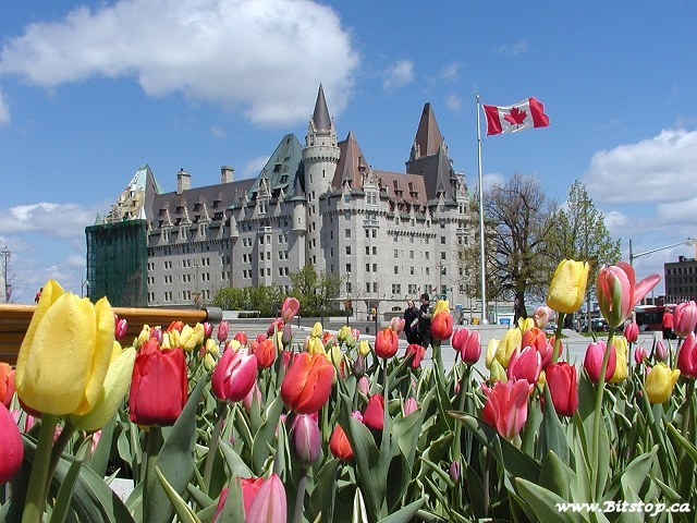 Chateau Laurier Hotel - Reception Sites, Attractions/Entertainment - 1 Rideau St, Ottawa, ON, K1N 8S7
