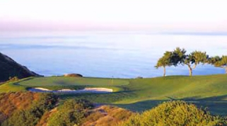 Torrey Pines Golf Course - Attractions/Entertainment, Golf Courses - 11480 N Torrey Pines Rd, La Jolla, CA, USA