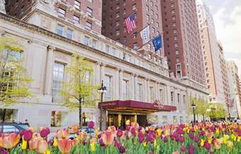 Hilton -- Chicago Downtown - Hotels/Accommodations, Reception Sites, Brunch/Lunch - 720 South Michigan Avenue, Chicago, IL, USA