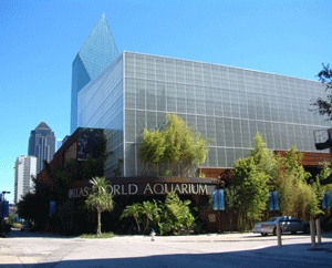 Dallas World Aquarium - Ceremony Sites, Reception Sites, Attractions/Entertainment - 1801 N Griffin St, Dallas, TX, United States