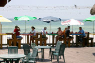 Sharky's - Restaurants - 15201 Front Beach Rd, Panama City Beach, FL, 32413