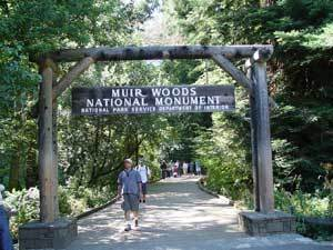 Muir Woods National Monument - Attractions/Entertainment, Parks/Recreation - 1 Muir Woods Road, Mill Valley, CA, United States