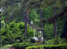 Cape Fear Botanical Garden - Ceremony Sites, Attractions/Entertainment, Parks/Recreation - 536 N Eastern Blvd, Fayetteville, NC, United States