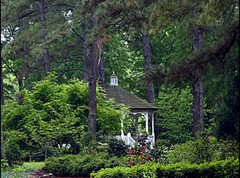 Cape Fear Botanical Garden - Ceremony - 536 N Eastern Blvd, Fayetteville, NC, United States