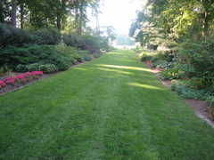 Norfolk Botanical Gardens - Ceremony - 6700 Azalea Garden Rd, Norfolk, VA, 23518