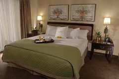 Doubletree Guest Suites Tampa Bay - Hotel - 3050 North Rocky Point Drive West, Tampa, FL, United States