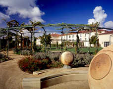 Hyatt Vineyard - Santa Rosa - Hyatt Vineyard  - Santa Rosa, CA, US