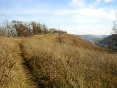 Hike up Barn Bluff - Hike -