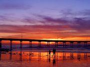 Ocean Beach - Attraction - Newport Ave, San Diego, CA, 92107, US
