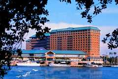The Westin Tampa Harbour Island - Hotel - 725 South Harbour Island Blvd., Tampa, FLorida, 33602
