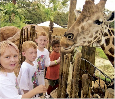 Lowery Park Zoo - Attractions/Entertainment, Ceremony Sites, Shopping - 1101 W Sligh Ave, Tampa, FL, 33604, US