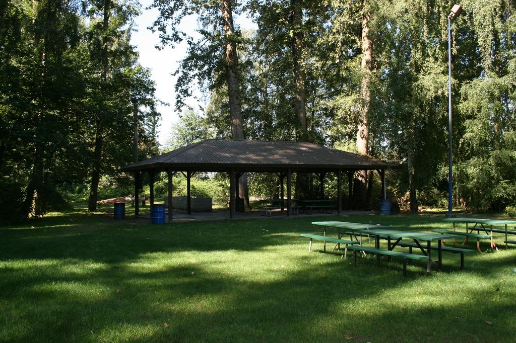Pre-nuptial Bbq Picnic - Barbecues/Picnics - 5100 Block River Rd, Delta, BC, CA