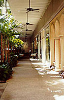 Bal Harbour Shops - Shopping, Attractions/Entertainment, Restaurants - 9700 Collins Ave, Bal Harbour, FL, United States