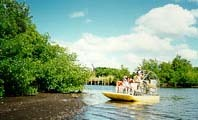 Everglades National Park - Attractions/Entertainment - 40001 State Road 9336, Homestead, FL, United States