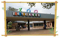 Houston Zoo - Attraction - Houston Zoo, 1513 N MacGregor Dr, Houston, TX