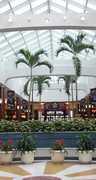 Military Circle Mall - Restaurant - Military Circle Mall, 880 North Military Highway, Norfolk, VA, 23502, US
