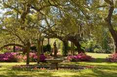 Airlie Gardens - Attraction - 300 Airlie Rd, Wilmington, NC, 28403