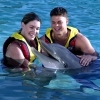 Dolphin World - Attractions - Fort Lauderdale, FL, 33315