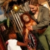 Parrot Jungle Island - Attractions/Entertainment, Ceremony Sites - 1111 Parrot Jungle Trail, Miami, FL, United States