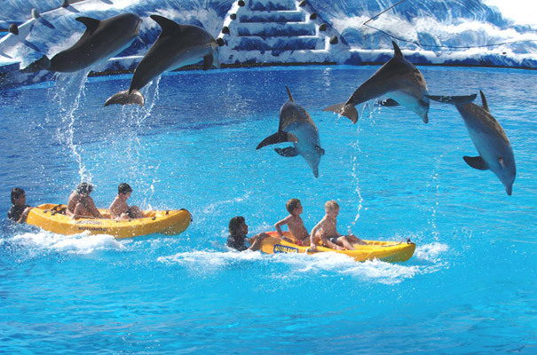 Aqualandia - Attractions/Entertainment - Sierra Helada S/N, Benidorm, Alicante/alacant, Spain