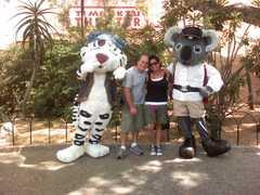 Busch Gardens - Attraction - 3000 E Busch Blvd, Tampa, FL, United States