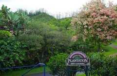 Senator Fongs Plantation & Garden - Attraction - 47-285 Pulama Rd, Kaneohe, HI, 96744