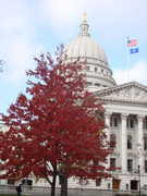 Wisconsin State Capitol - Attraction - 2 E Main St, Madison, WI, 53703, US