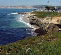 La Jolla Cove - Attractions - 850 Coast Blvd, San Diego, CA, 92037, US