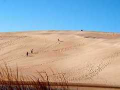 Jockey's Ridge State Park - Attraction - 300 West Carolista Drive, Nags Head, NC, United States