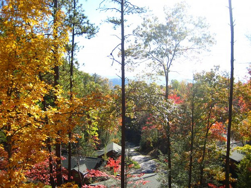 Gatlinburg Falls Resort (main Office) - Hotels/Accommodations - 653 Hidden Valley Rd, Gatlinburg, TN, 37738, US