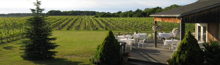 Paumanok Vineyards - Wineries, Ceremony Sites - 1074 Main Road, Riverhead, NY