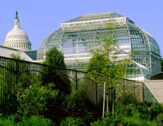 US Botanic Gardens - Attraction - 100 Maryland Ave SW, Washington, DC, US