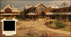 New Belgium Brewing Co - Breweries - 500 Linden St, Fort Collins, CO, United States