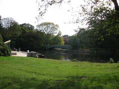 Brooklyn Botanic Gardens - Explore the borough of Brooklyn! - 1000 Washington Ave, New York, NY, 11225, US