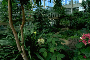State Botanical Garden Of Georgia - Reception Sites - 2450 South Milledge Avenue, Athens, GA, United States