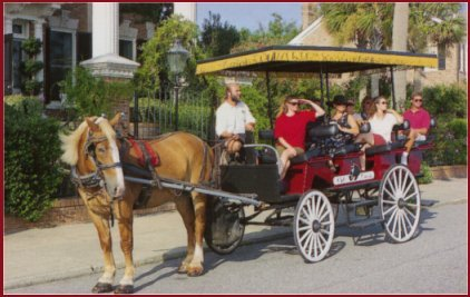 Olde Towne Carriage - Attractions/Entertainment, Limos/Shuttles - 20 Anson Street, Charleston, United States
