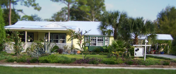 10th Street Bed & Breakfast - Hotels/Accommodations - 605 10th St, Port St Joe, FL, 32456