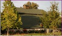 Thomas Coyne Winery - Attractions/Entertainment, Wineries - 51 Vallecitos Road, Livermore, CA, United States