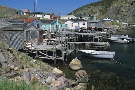 Quidi Vidi Village - Attractions/Entertainment -