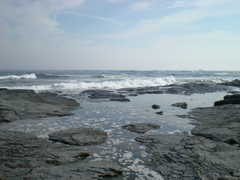 Brenton Point/Ocean Drive State Park - Attraction - Newport, Rhode Island, United States