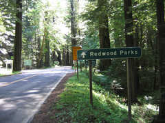 Humboldt Redwoods State Park - Outside Fun - Uninc Humboldt County, California, United States
